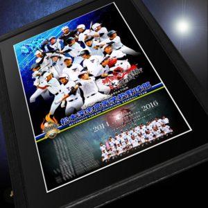 高校野球記念パネル